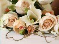 esküvői fotó 6
